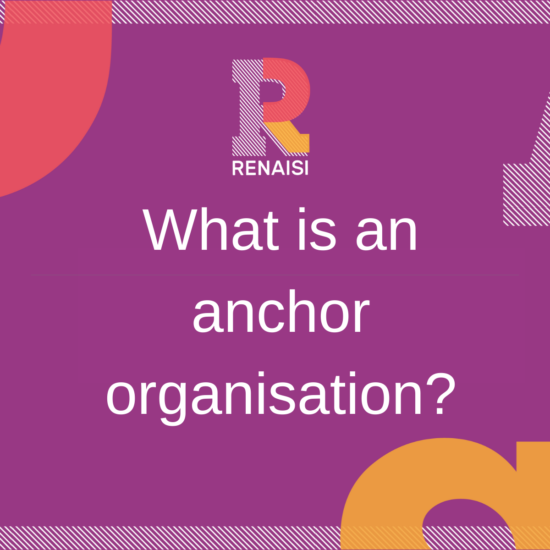 What is an Anchor organisation