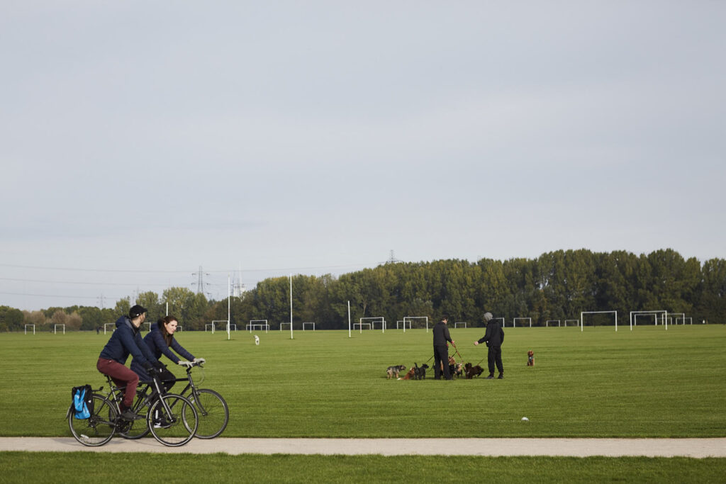 2 cyclists and 2 dog walkers with lots of dogs in a park.